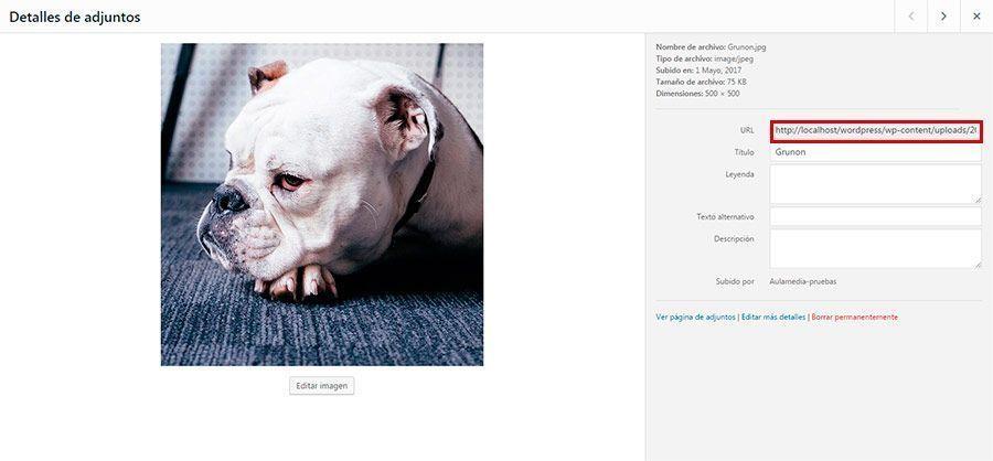 Efecto rollover en Divi. Bulldog