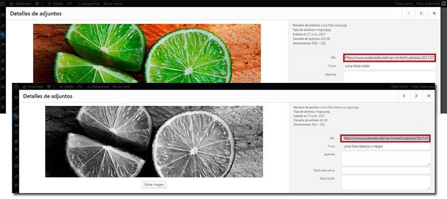 copiar-url-imagen