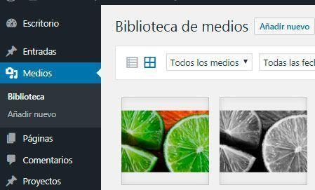 importar-imagenes-biblioteca